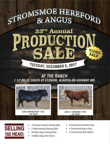 32nd Annual Stromsmoe Hereford and Angus Production Sale